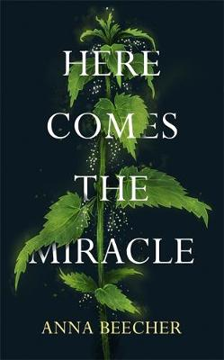 Here Comes the Miracle poster