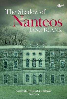 Shadow of Nanteos, The poster