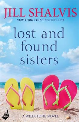 Lost and Found Sisters poster