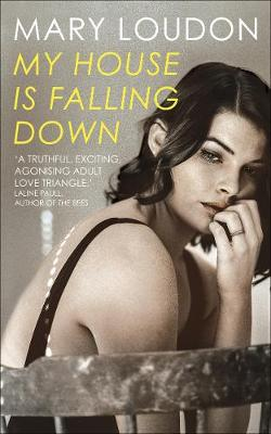 My House Is Falling Down poster