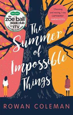 The Summer of Impossible Things poster