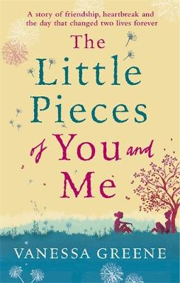 The Little Pieces of You and Me poster