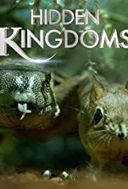 Hidden Kingdoms poster